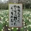相田みつを 「にんげんだもの 2」