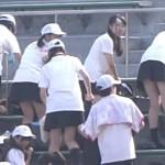 チアガール 58 高校野球神奈川大会  2016