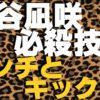 渋谷凪咲の必殺技パンチとキック【NMB48】【AKB48】【総合格闘技】