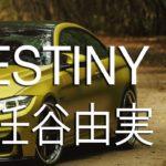 DESTINY (Yuming Original)
